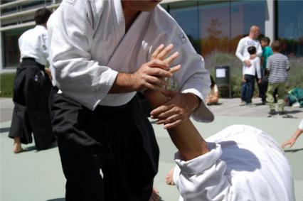 Aikido move